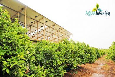 Bombeo solar directo con pozo de agua en finca agrícola de valencia
